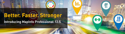 MapInfo Professional v12.5